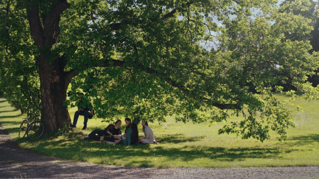 Ihmisiä puun alla / People under a tree
